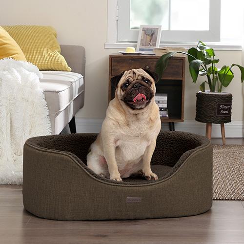 Vizia i tuoi adorati amici a quattro zampe con la nostra ampia gamma di articoli per cani.